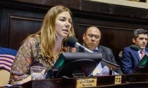 Zuccari exige que el Gobierno de Kicillof informe las estrategias contra el coronavirus