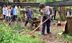 Proponen crear huertas en escuelas y jardines porteños