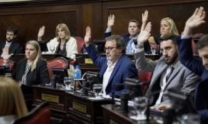 Senadores de la oposición buscan proteger a las pymes ante la caída de la actividad